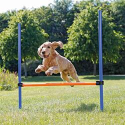 Trixie Agility Hurdle | Agility forhindring