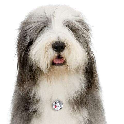 My Family | Hundetegn Old English Sheepdog