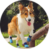 Outdoor waterproof pet socks - vandtaette hundesokker hundestrømper